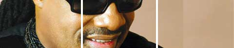 Stevie Wonder erobert Istanbul