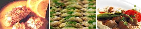 Türkische Hühnerfleisch-Röllchen